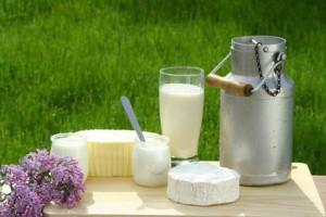 Milchprodukte    © Claudio Calcagno - Fotolia.com