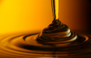 Honig - das gelbe Gold