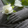 Möge Betty Ford in Frieden ruhen © lelb - Fotolia.com