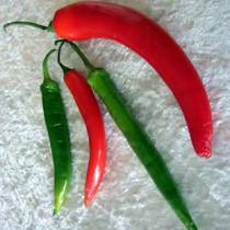 Chilis: Scharf, amromatisch, gesund - und medizinisch wertvoll.  Foto: igtv