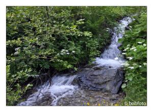 … beim Wandern in Kontakt mit der Natur sein…..